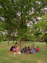 A picnic with friends at Emmarentia