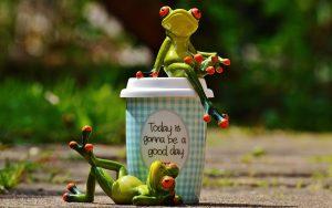 beautiful-day-Life Improvement bootcamp Frog