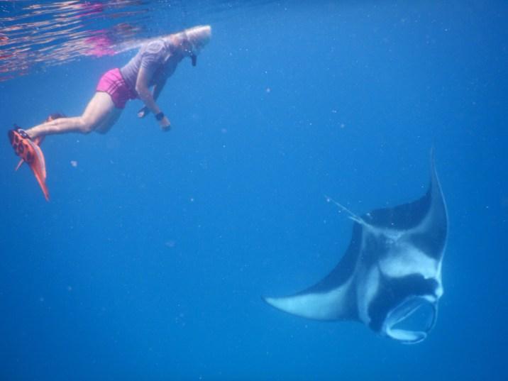 pływanie z mantami photo by Gabriela Farias