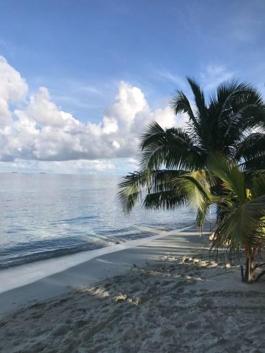 hotele na Malediwach, spokojna niebieska woda, palmy na plaży