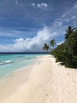 pogoda na Malediwach, biała plaża, zielone palmy, turkusowa woda