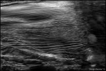Flowing Texture