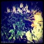 green leafies