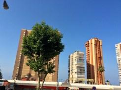 Benidorm dispone de dos rutas de autobús panorámico que permiten conocer toda la ciudad y su entorno más cercano (Altea, El Albir y la Cala de Finestrat) desde una diferente y divertida perspectiva.