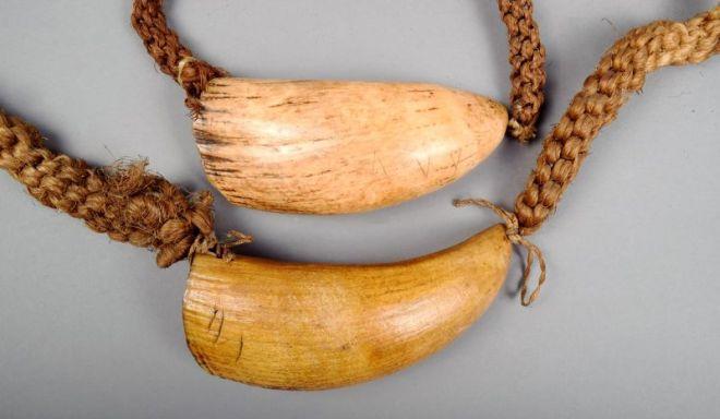 Įdomybės apie Fidžį - kašaloto dantų vėrinys