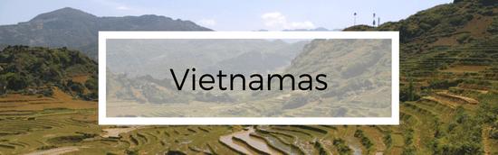 Kelionė į Vietnamą