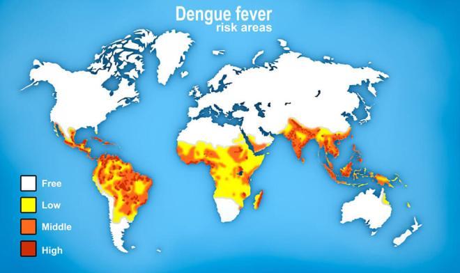 Dengės karštligės viruso paplitimo šalių žemėlapis