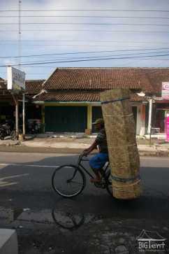 How easy to transport gedheg