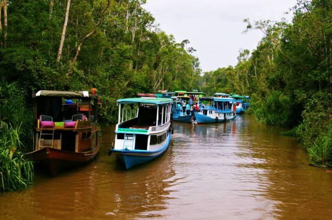 Travel photos from Asia - Borneo