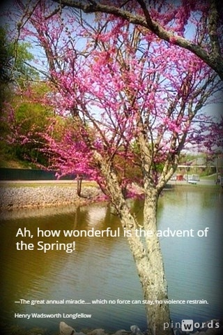 springtime 8
