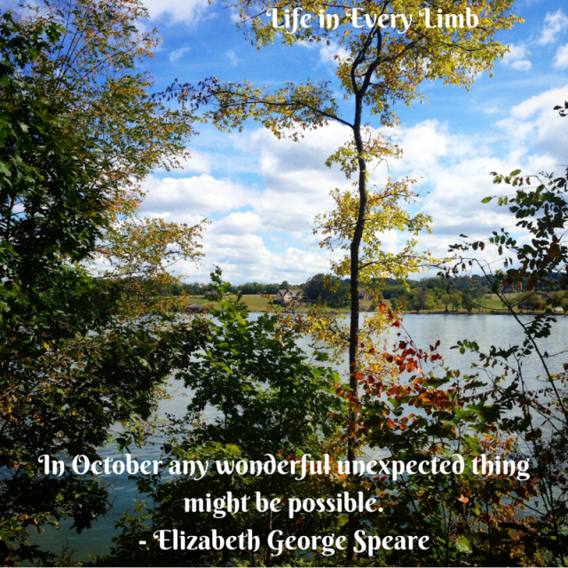 In October any wonderful unexpected thing might be possible. - Elizabeth George Speare