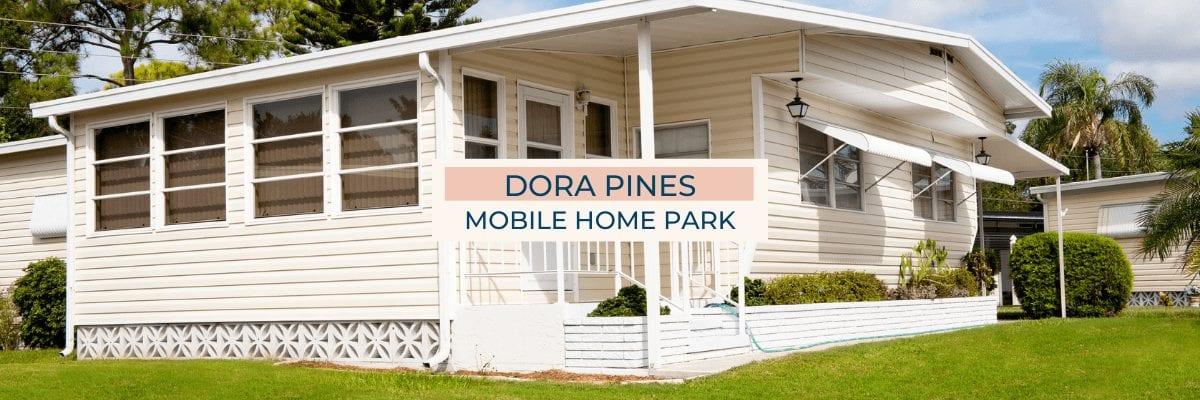Dora Pines