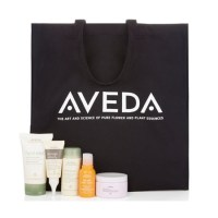 Beauty pick: Ultimate summer kit from Aveda