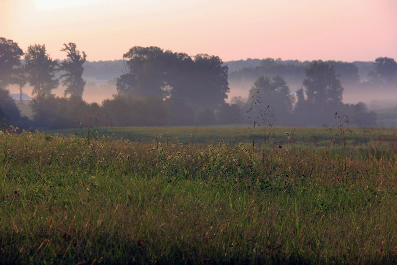 Chancellorsville 3