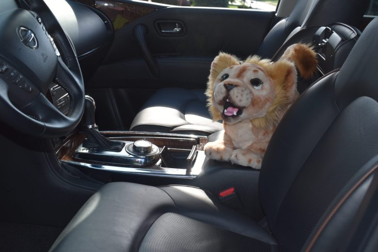 Nissan Armada and Simba Lion King. What Drives Her Chicago luncheon. Girls Drive cars