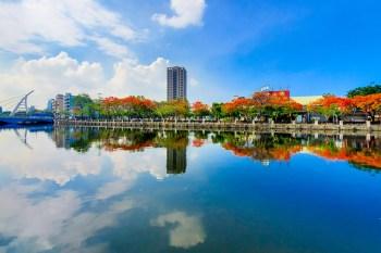 【臺南景點】花開就是有學生要畢業了|一睹鳳凰花的風采~~府前一街鳳凰花開