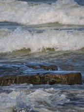 waves Lake Ontario