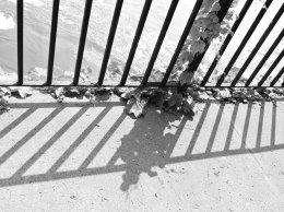 railing Linear Park color