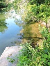 Oswego Canal lock #2 Great Bear4