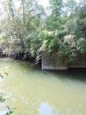 Oswego Canal Lock#2 Great Bear