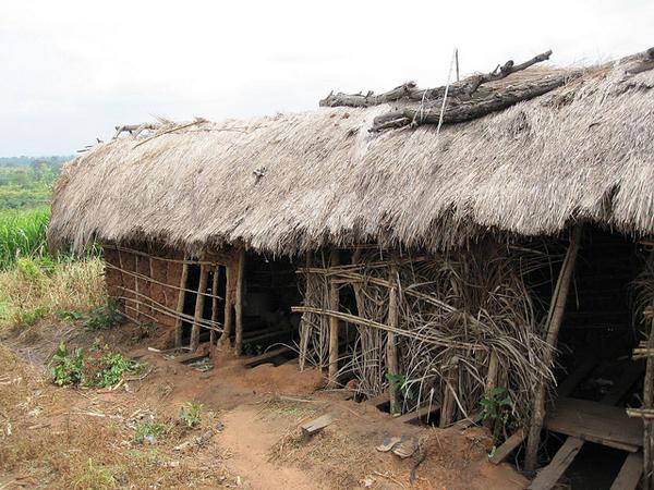 Village latrine in Ghana