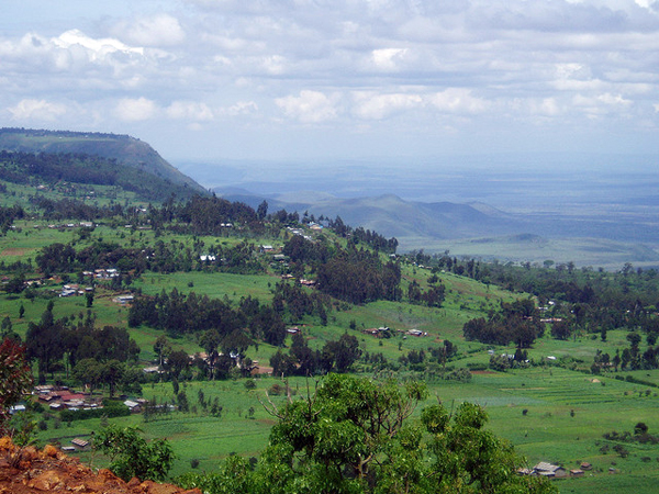 Kenya Highlands