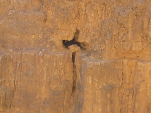 Cross on the Jericho Road, Israel
