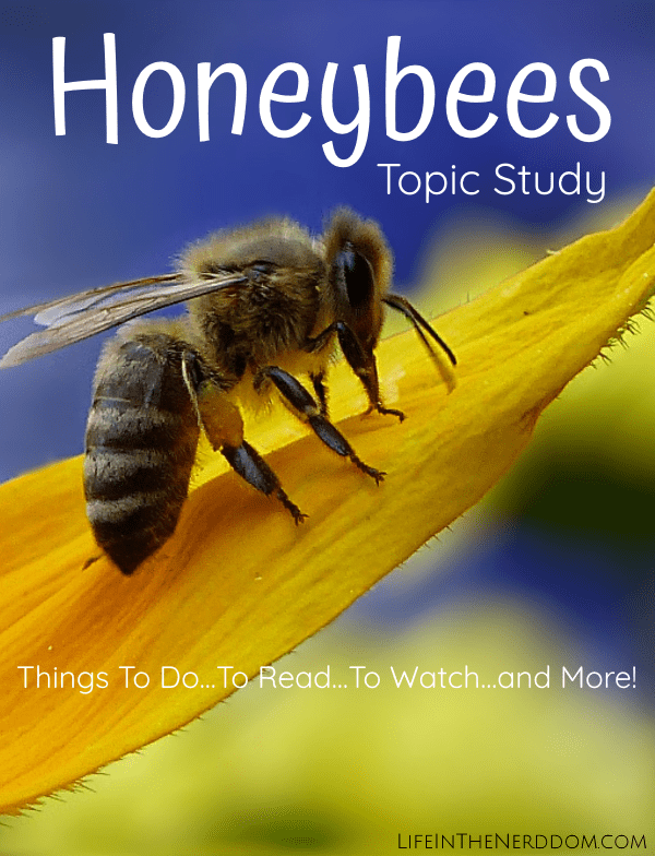 Honeybees Unit Study at LifeInTheNerddom.com