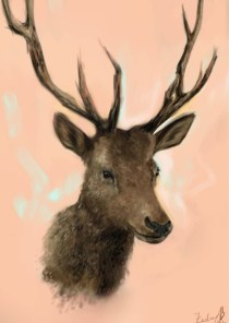 Elk by Zachary Blumner