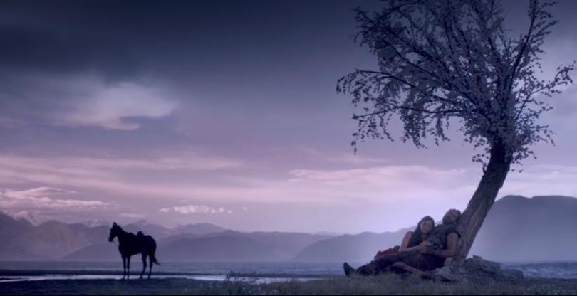 saiyami-kher-harshvardhan-kapoor-trees-company