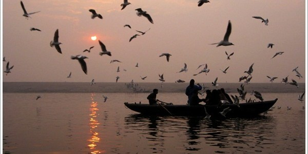 Boat Ride on the Ganga during Sunrise in Varanasi