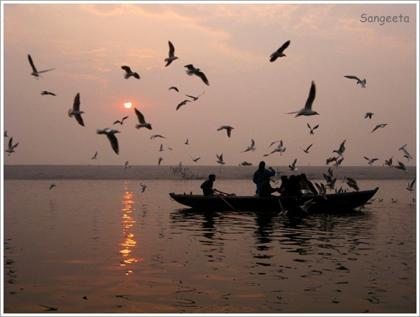 Boat Ride Varanasi Sunrise