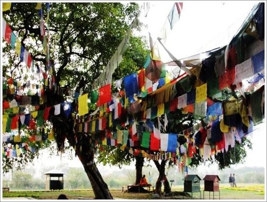 Lumbini Nepal Meditation