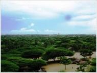 Rameshwaram Sightseeing One Day - Gandhamadhana