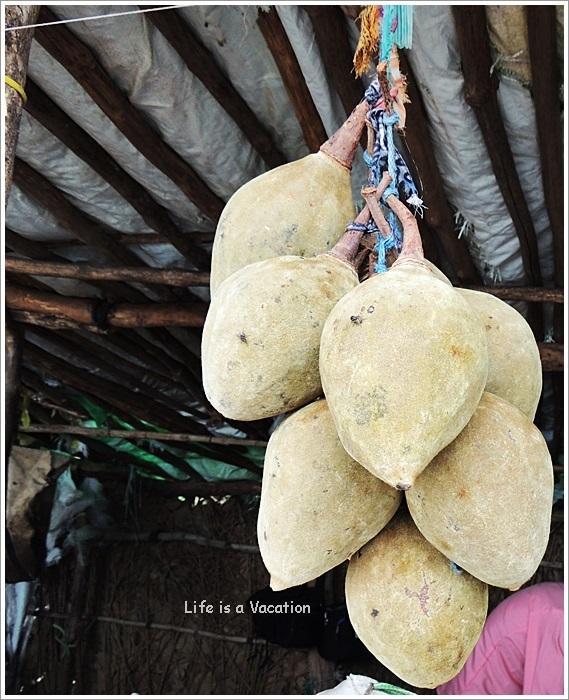 Mandu Tamarind Baobab
