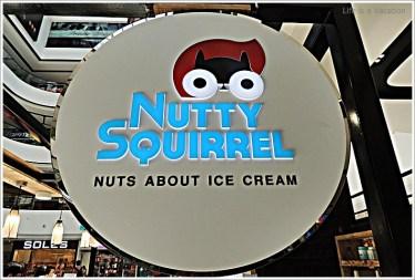 Nutty Squirrel Bangalore