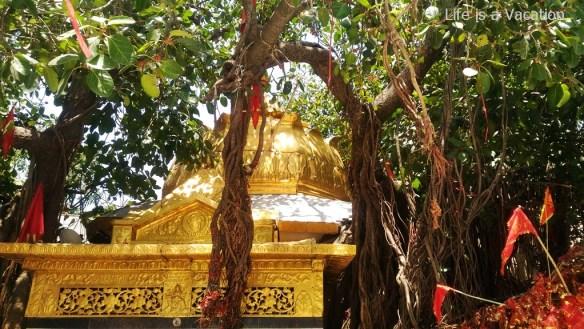 Temples in Kangra - Chintpurni