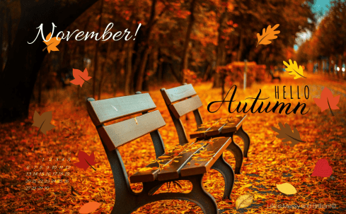 free-cute-fall-november-2016-desktop-wallpaper