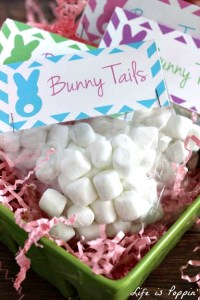 bunny-tails-with-free-printable
