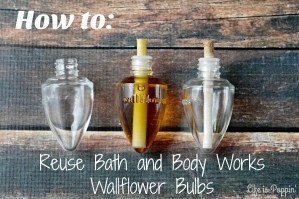 Reuse Bath and Body Works Wallflower Bulbs
