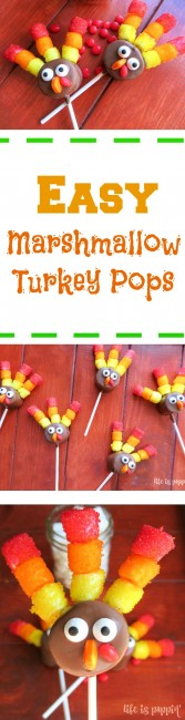 easy-marshmallow-pops-pinterest