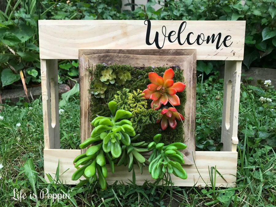 Welcome-sign-succulent-planter