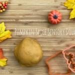 Pumpkin Spice Sensory Dough