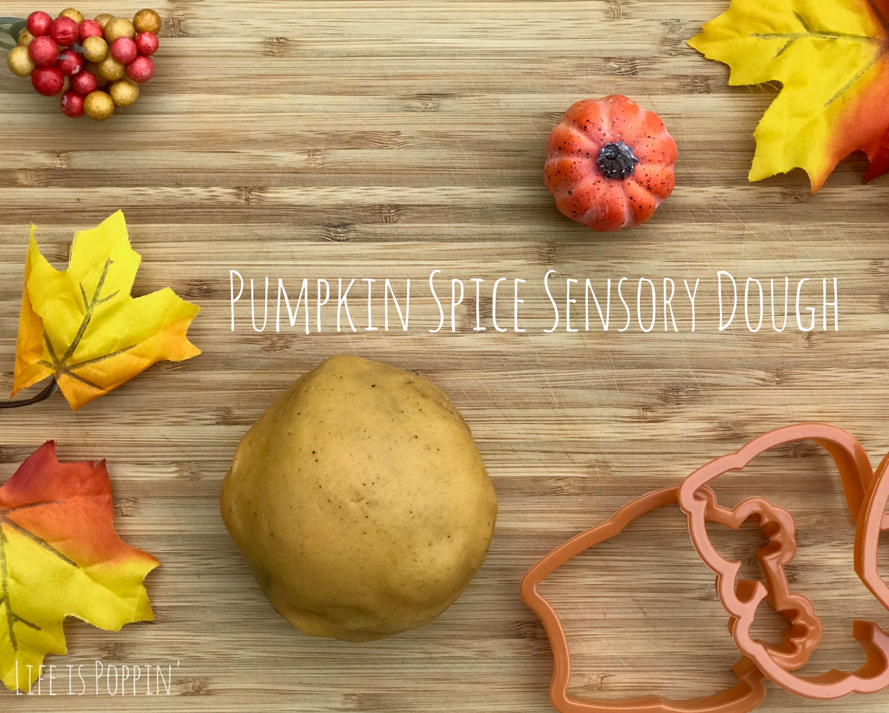 Pumpkin-Spice-Dough