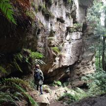 Day trip to the Blue Mountains.