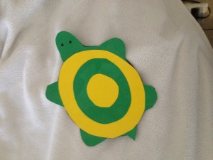 turtle magnet complete