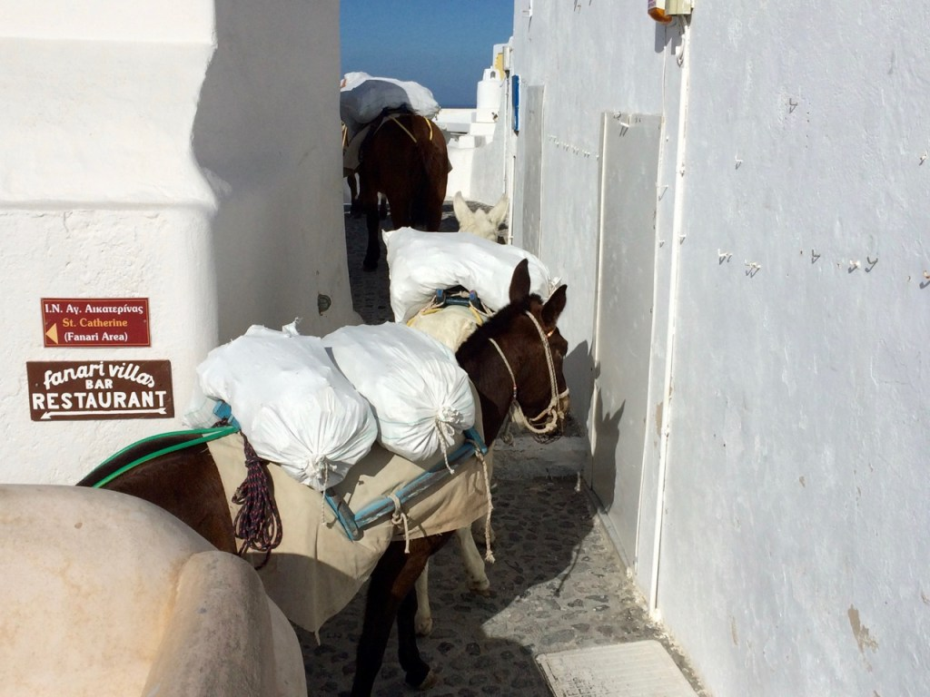 Donkeys ladened with stones for building construction follow each other in single file up the stone pathway