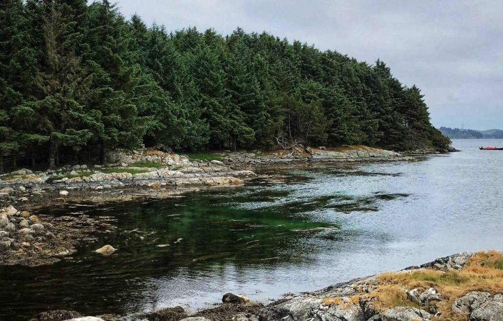 A view of the inlet green water with a border of pine trees at the Homeland of the viking kings