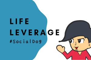 social dog