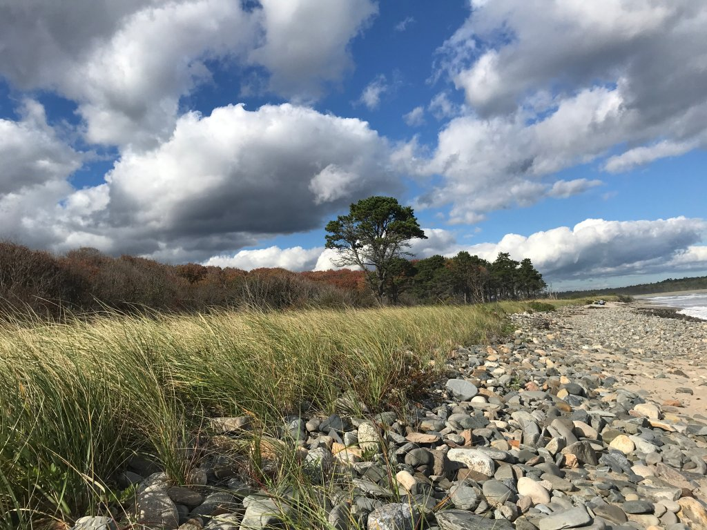 The beach at the end of a trail at the Wells Reserve - one of the easiest trails for hiking around Portland, Maine.